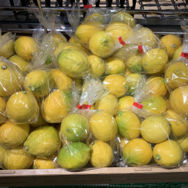 12月25日のおすすめ!『国産レモン』