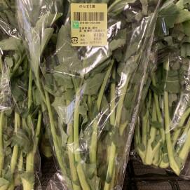3月15日のおすすめ!『のらぼう菜』