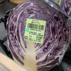 3月19日のおすすめ!『紫キャベツ』