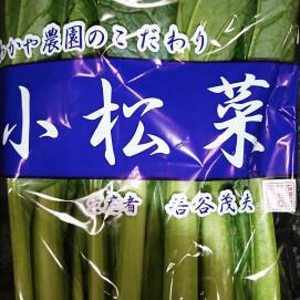 11月14日のおすすめ!『小松菜』