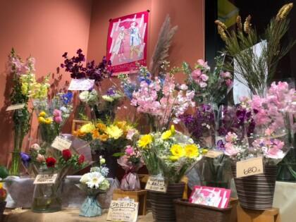 ☆春のお花盛沢山!