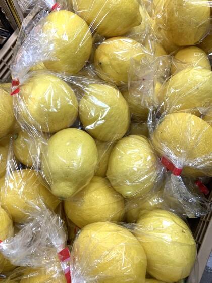 4月16日のおすすめ!『国産レモン』
