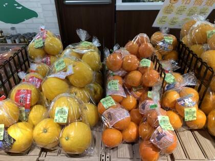 3月22日のおすすめ!『今が旬!な柑橘』