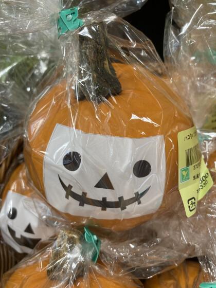 9月22日のおすすめ!『ハロウィンかぼちゃ』