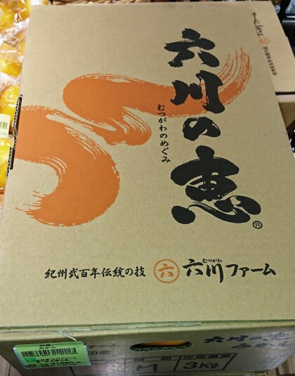 11月15日のおすすめ!『六川の恵 みかん』