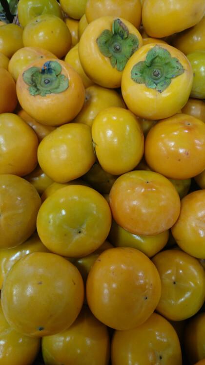 10月23日のおすすめ!『富有柿』