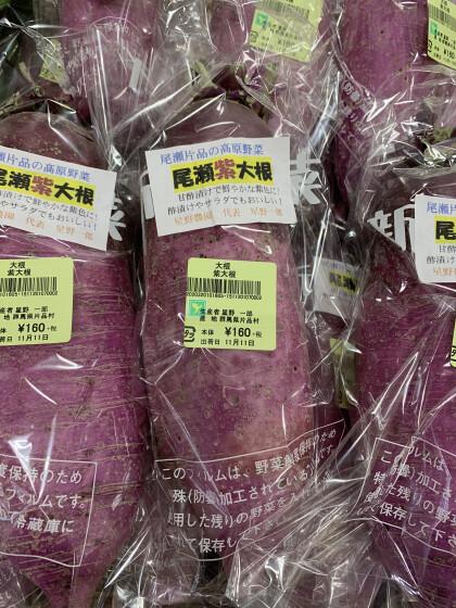 11月12日のおすすめ!『尾瀬の紫大根』