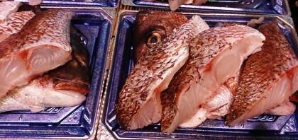 3月31日のおすすめ!『真鯛切身(養殖)』